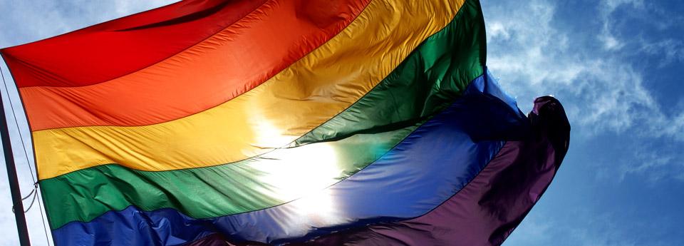 Flagge - Pride - Leben